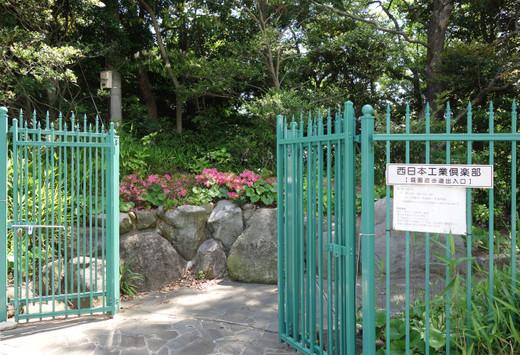 Matsumotoke05