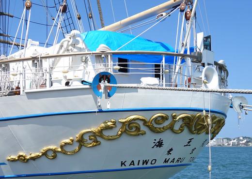 Kaiwomaru29