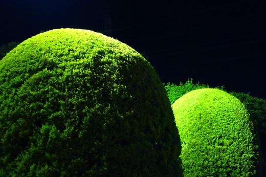 Greenpark30