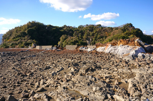 Tsumura_island13