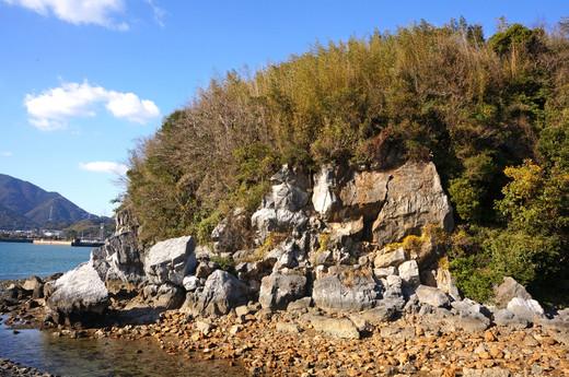 Tsumura_island20